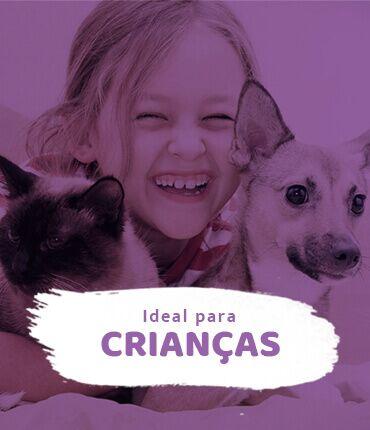 Conheça os gatos e cachorros para crianças